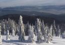 Gorce Ultra-Trail po raz pierwszy w zimę